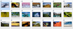 Bing's Best 2 Theme pack for win7