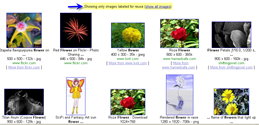 finding images to reuse