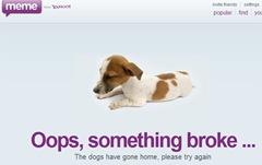 Yahoo meme dog sleeping