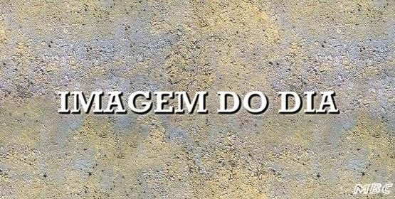 [IMAGEM DO DIA[3].jpg]