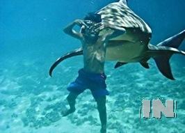 Criança tirando a foto antes de ser comida pelo tubarão no bom e no mal sentido...