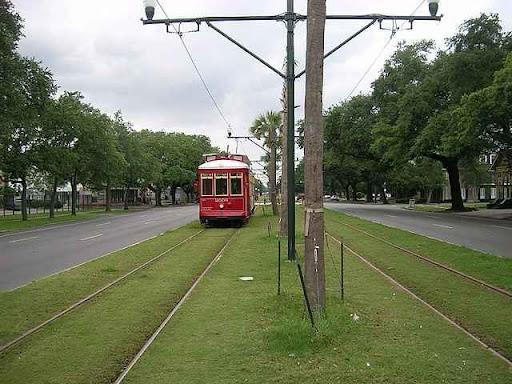 New Orleans, tram, fűvesített villamospálya, gyepesített villamospálya