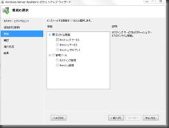 AppFabric1