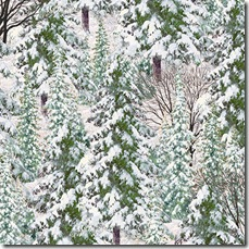 Winter's Gleam - Snowy Trees Lt. Ice #19-172