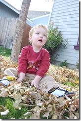 October 2009 527
