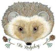 the_hedgehog