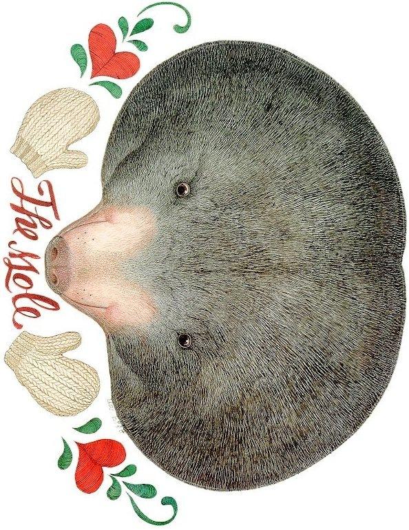 [the_mole[8].jpg]