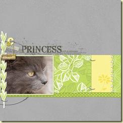 2009-5-24-DD-Princess