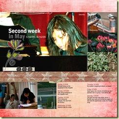 Project-365-week-20