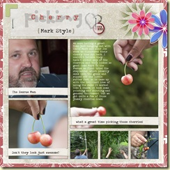 2009-7-4-DD-Cherry-picking