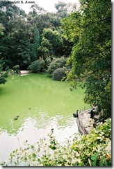 Casa de Serralves-Jardins- (12)