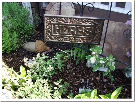 herb garden june09 006