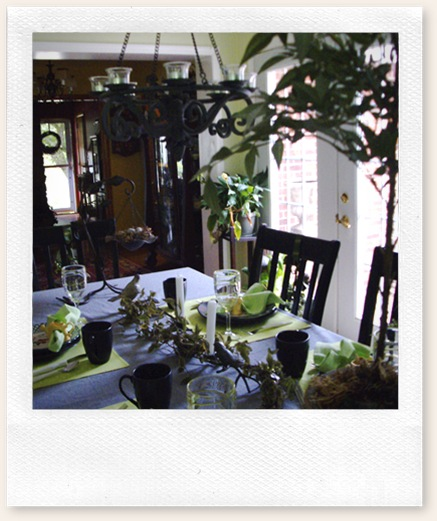 tablescape june 11 09 019