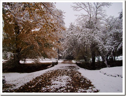 winter october 014
