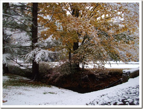 winter october 015