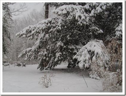 snowstorm 2.11 018