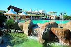 Фото 10 Kaya Select Resort & SPA