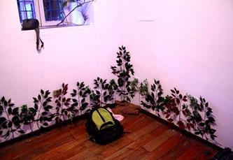 6 plantas zocalo baja