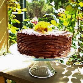 by Samantha Linn - Food & Drink Cooking & Baking