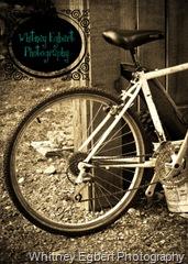 bike 540