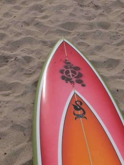 Tim Stafford Custom Surfboards - bonzer EVO3 shortboard