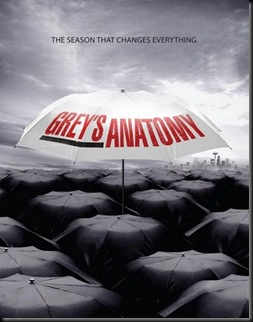 greys-anatomy-season-6-poster_520x672