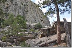 Wyoming 2009 125