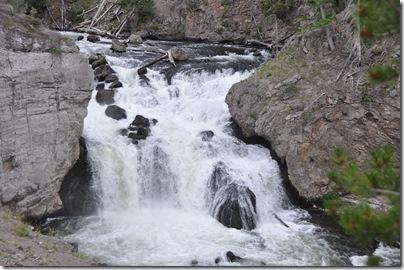 Yellowstone 2009 177