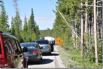 Yellowstone 2009 001