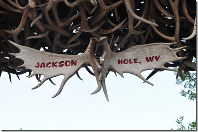 Yellowstone 2009 083
