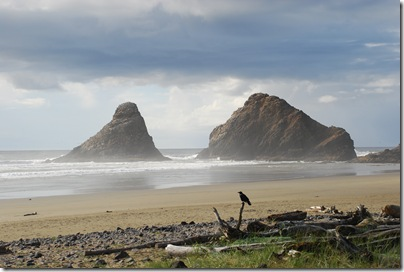 South Beach State Park, OR 041
