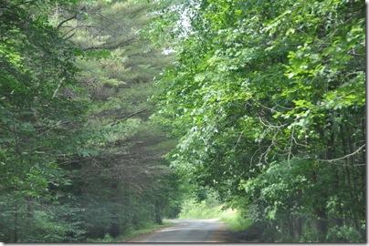 Vermont 2010 086