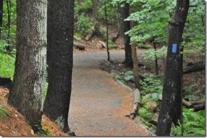 Vermont 2010 060