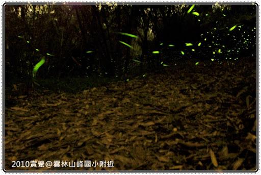 古坑-山峰國小【2010 山峰點火.與螢有約】