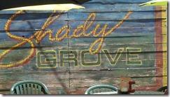 shady grove2