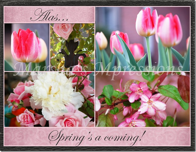 spring coming - pink flower collage copy w watermark
