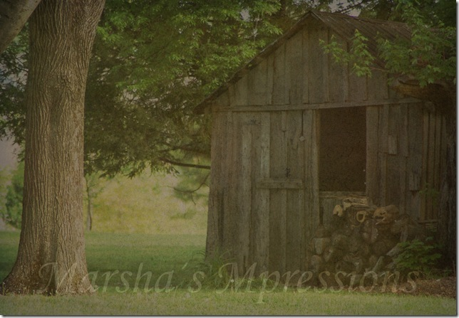 woodshed with gold days at 61 w watermark