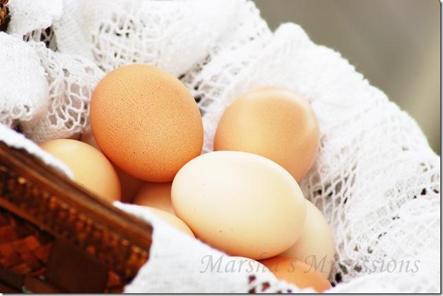 eggs w watermark