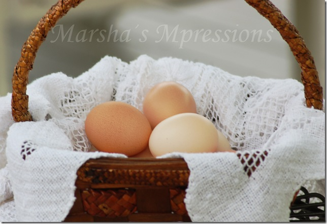 eggs in a basket w watermark
