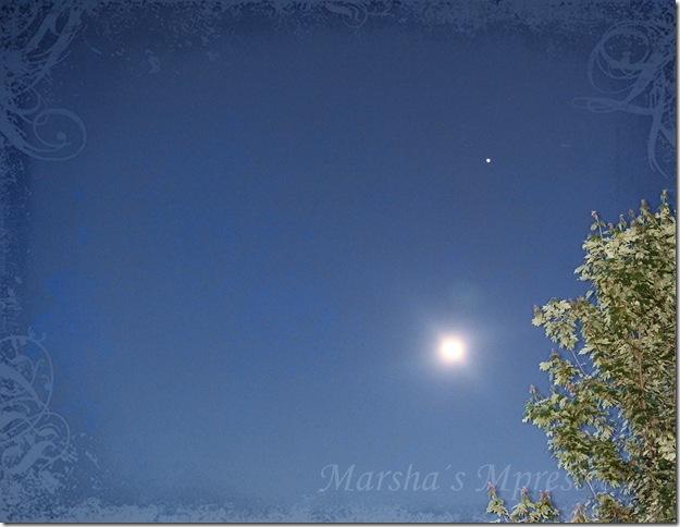 full moon w swirls watermark