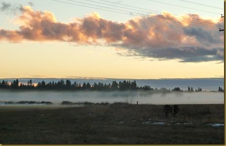 fog 020