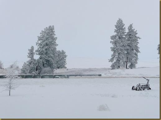 2010 snow 012