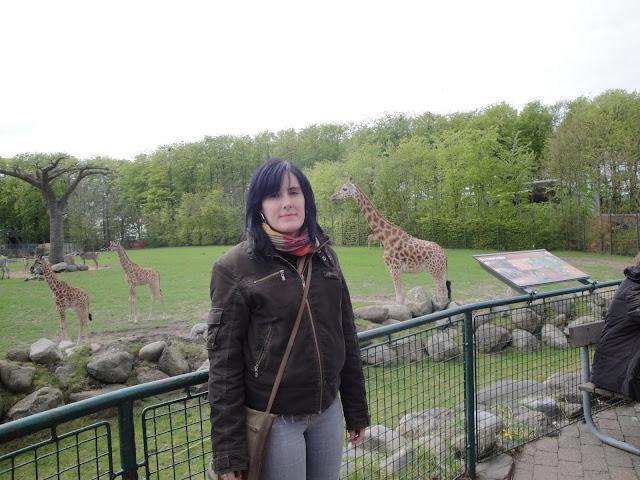 Yo y las jirafas