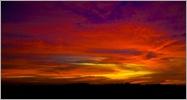 Morning Glory-IMG_7669-Edit-Edit[5]