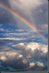 Rainbow - iStock_000006008588XSmall