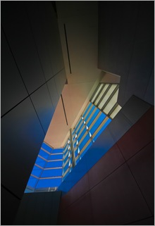 Captured Blue-IMG_0777