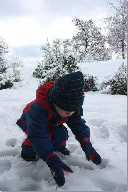Aj e la neve