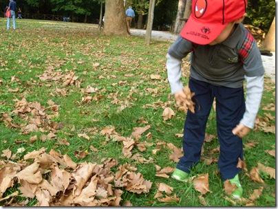 le foglie scricchiolano...