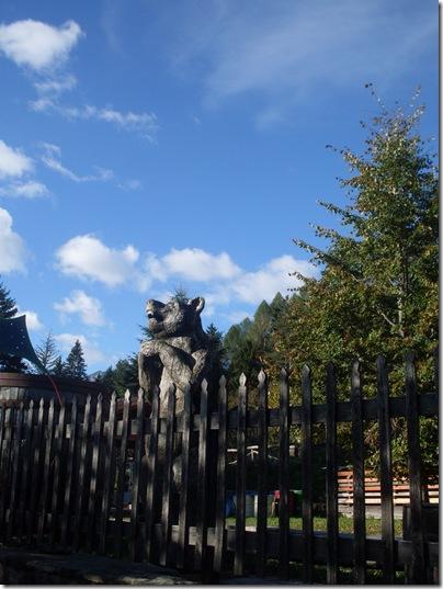 L'orso di legno del bosco di Museis