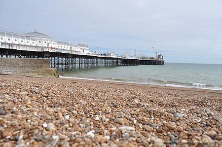 BrightonDSC_0768